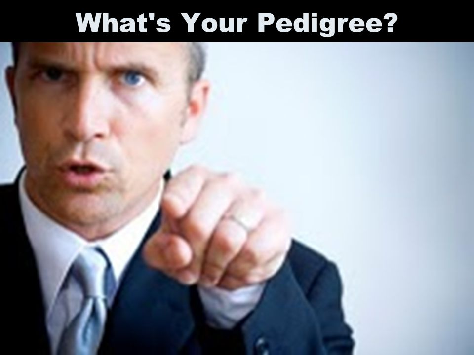 What's Your Pedigree?