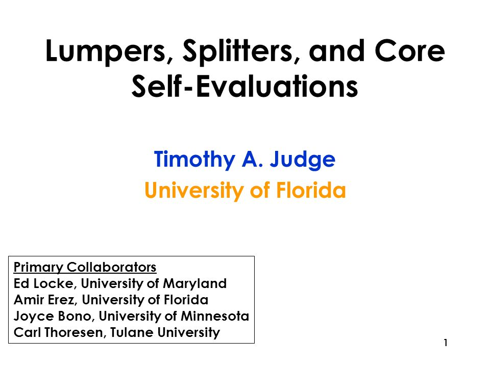 1 Lumpers, Splitters, and Core Self-Evaluations Timothy A.