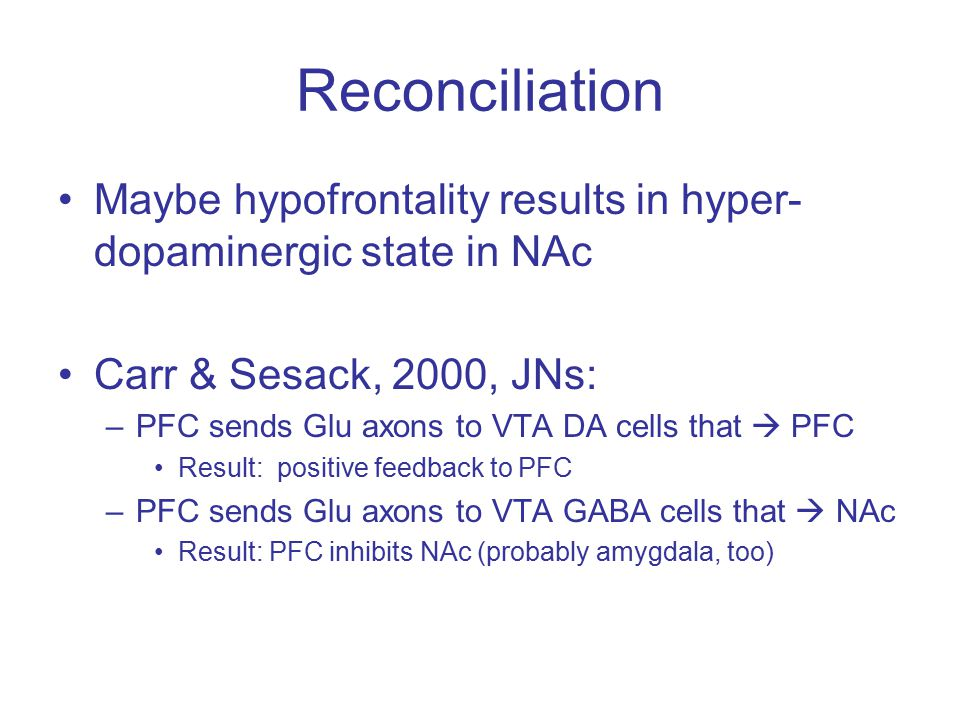 Reconciliation Maybe hypofrontality results in hyper- dopaminergic state in NAc Carr & Sesack, 2000, JNs: –PFC sends Glu axons to VTA DA cells that  PFC Result: positive feedback to PFC –PFC sends Glu axons to VTA GABA cells that  NAc Result: PFC inhibits NAc (probably amygdala, too)