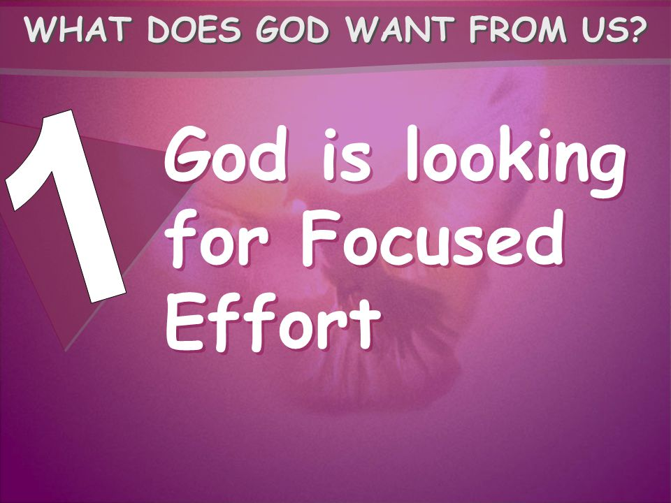God is looking for Focused Effort WHAT DOES GOD WANT FROM US?