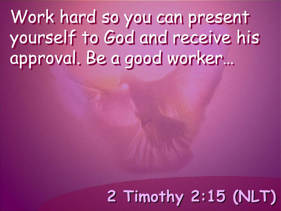 2 Timothy 2:15 (NLT) Work hard so you can present yourself to God and receive his approval. Be a good worker…