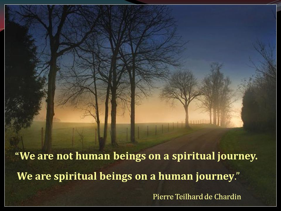 We are not human beings on a spiritual journey.