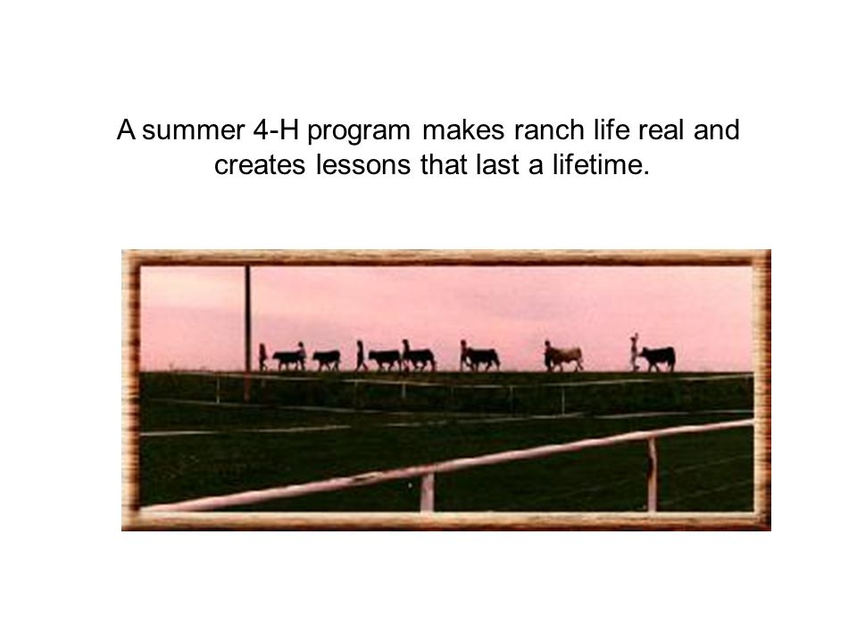 In addition to the Ranch, there are five group homes around the state of Idaho