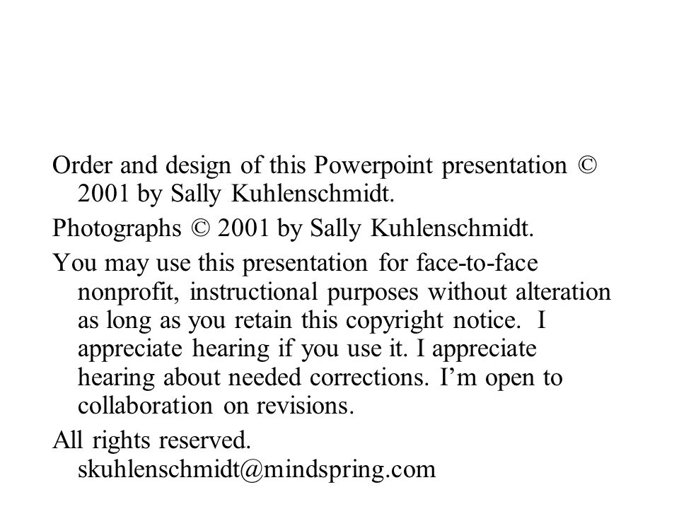 Order and design of this Powerpoint presentation © 2001 by Sally Kuhlenschmidt.