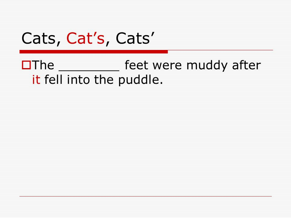 Cats, Cat's, Cats'  The ________ feet were muddy after it fell into the puddle.