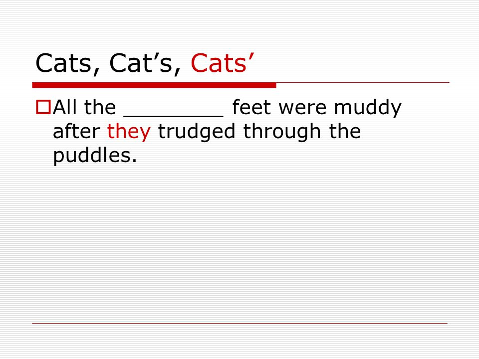 Cats, Cat's, Cats'  All the ________ feet were muddy after they trudged through the puddles.
