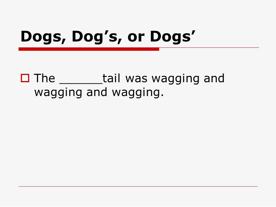 Dogs, Dog's, or Dogs'  The ______tail was wagging and wagging and wagging.
