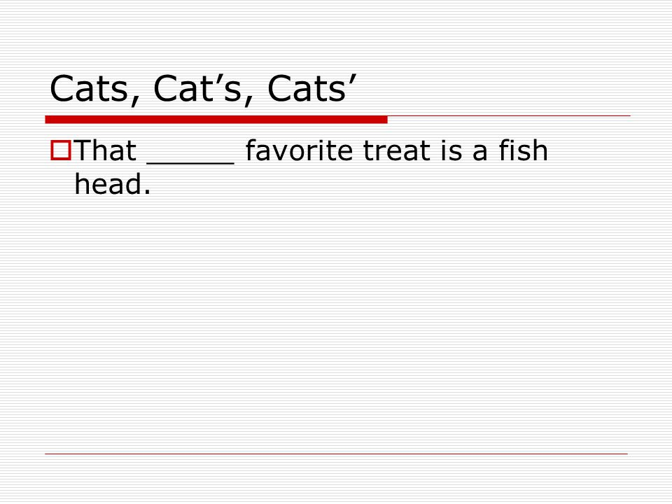 Cats, Cat's, Cats'  That _____ favorite treat is a fish head.