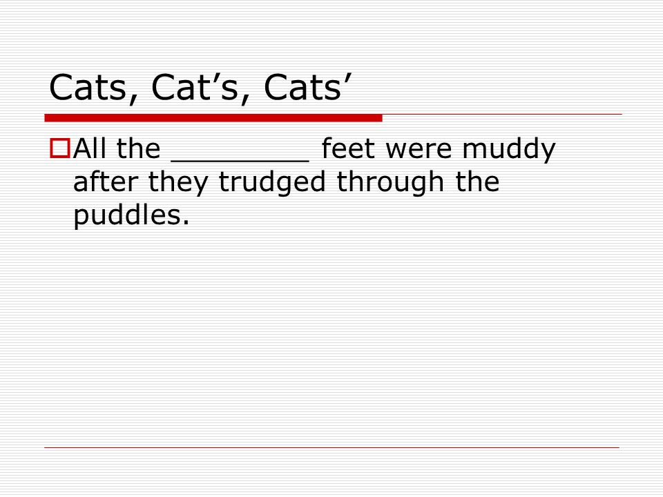 Cats, Cat's, Cats'  All the ________ feet were muddy after they trudged through the puddles.