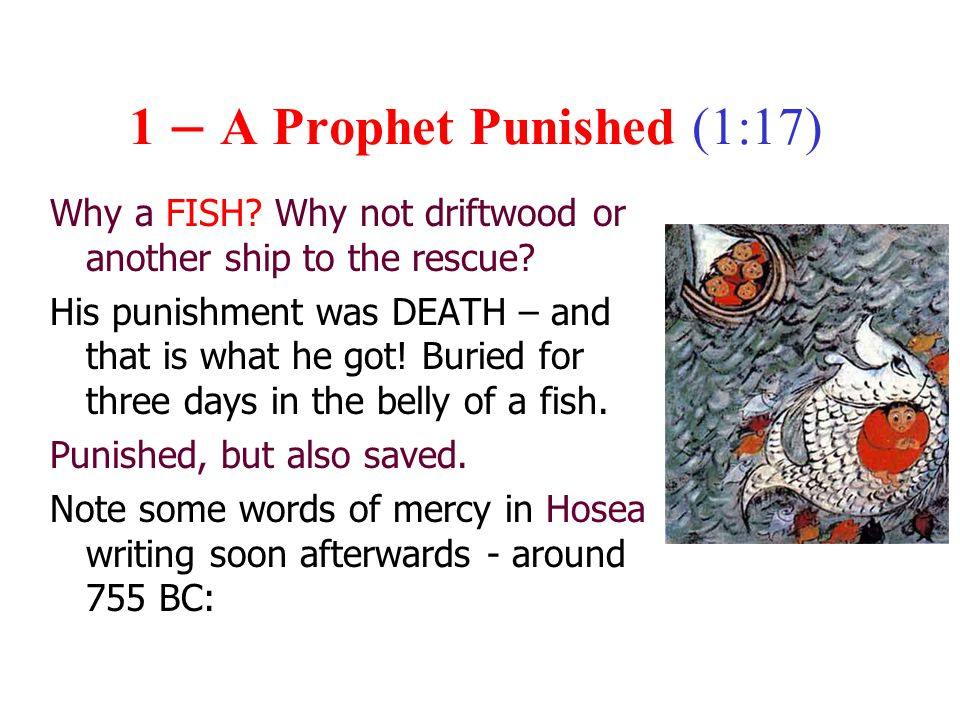 1 – A Prophet Punished (1:17) Why a FISH. Why not driftwood or another ship to the rescue.
