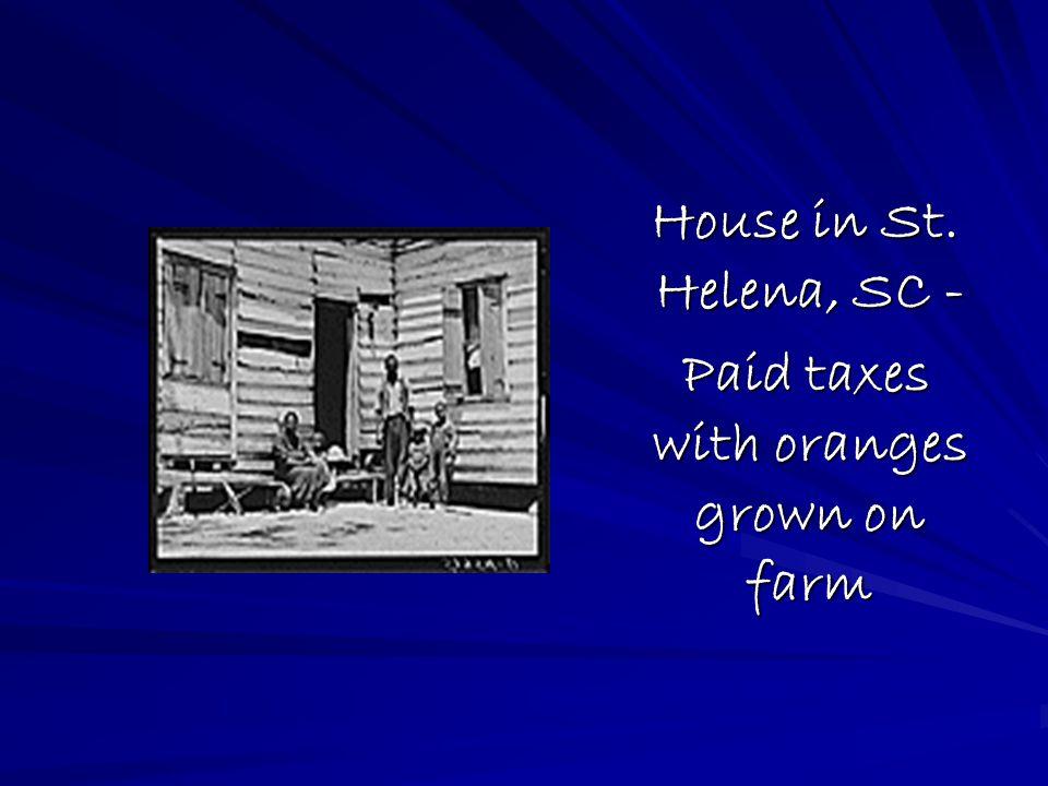 House in St. Helena, SC - House in St. Helena, SC - Paid taxes with oranges grown on farm Paid taxes with oranges grown on farm