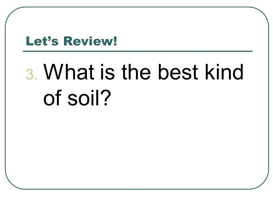 Let's Review! 3. What is the best kind of soil?