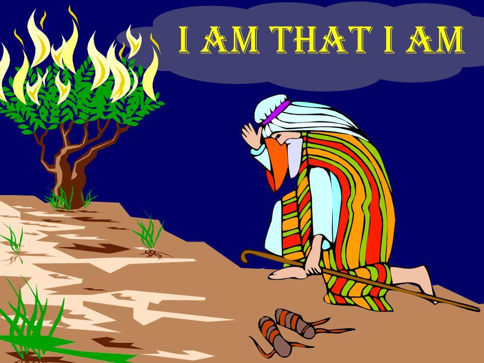 John 8:58 Before Abraham was, I am John 8:58 Before Abraham was, I am