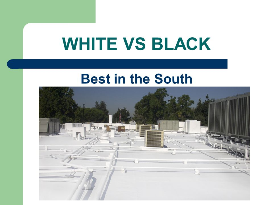 WHITE VS BLACK Best in the South