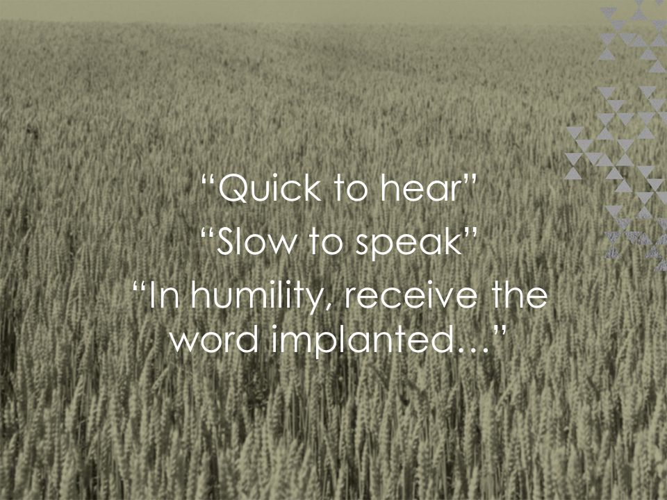 Action: Listen and respond with humility.