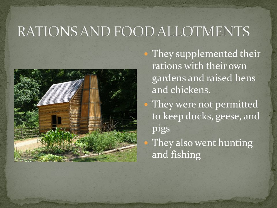 They supplemented their rations with their own gardens and raised hens and chickens.