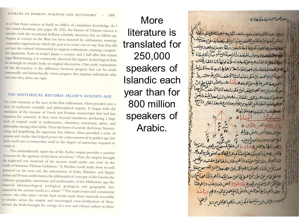 More literature is translated for 250,000 speakers of Islandic each year than for 800 million speakers of Arabic.