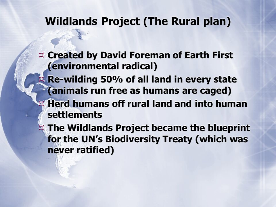 Wildlands Project (The Rural plan)  Created by David Foreman of Earth First (environmental radical)  Re-wilding 50% of all land in every state (animals run free as humans are caged)  Herd humans off rural land and into human settlements  The Wildlands Project became the blueprint for the UN's Biodiversity Treaty (which was never ratified)  Created by David Foreman of Earth First (environmental radical)  Re-wilding 50% of all land in every state (animals run free as humans are caged)  Herd humans off rural land and into human settlements  The Wildlands Project became the blueprint for the UN's Biodiversity Treaty (which was never ratified)