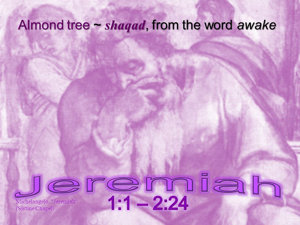 Almond tree ~ shaqad, from the word awake Michelangelo, Jeremiah (Sistine Chapel)