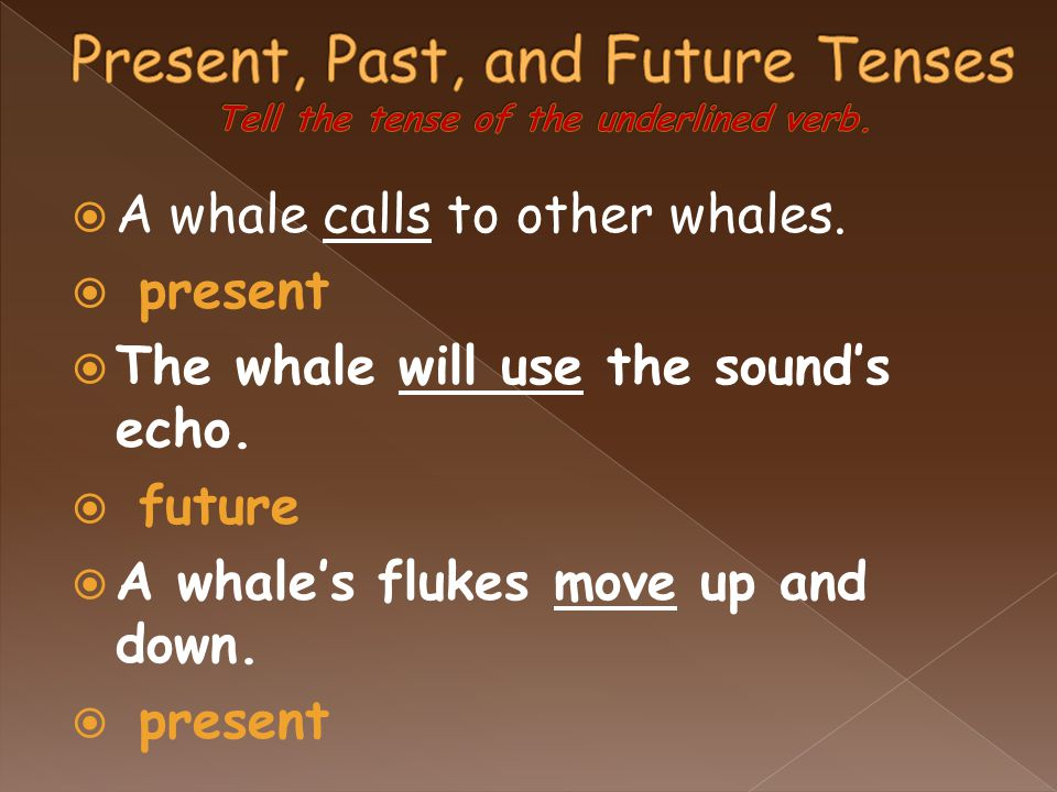  A whale calls to other whales.  present  The whale will use the sound's echo.  future  A whale's flukes move up and down.  present