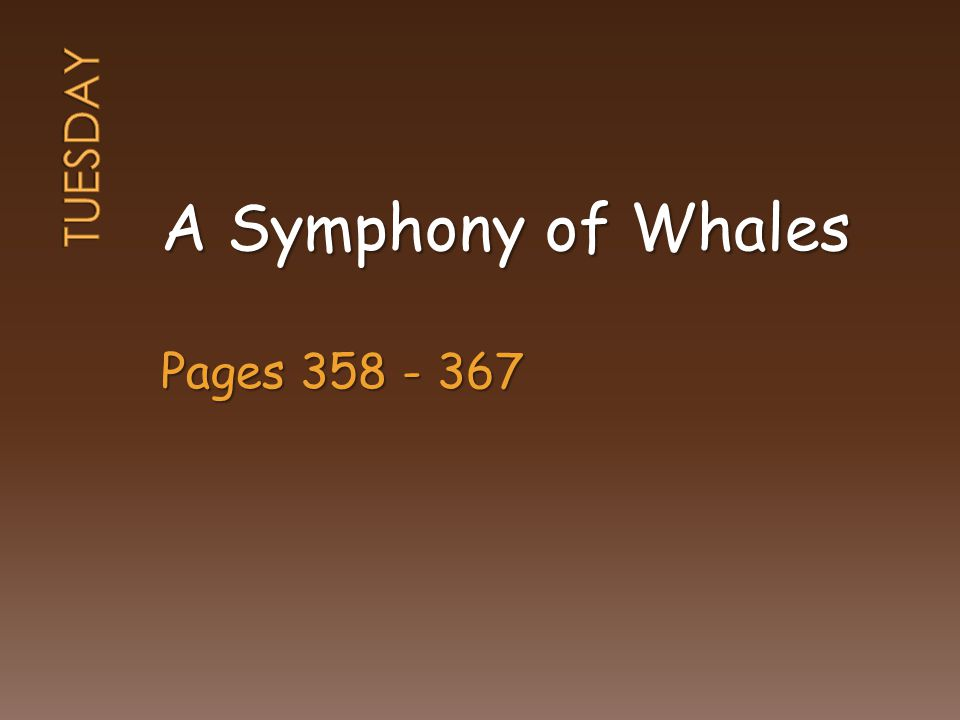 A Symphony of Whales Pages 358 - 367