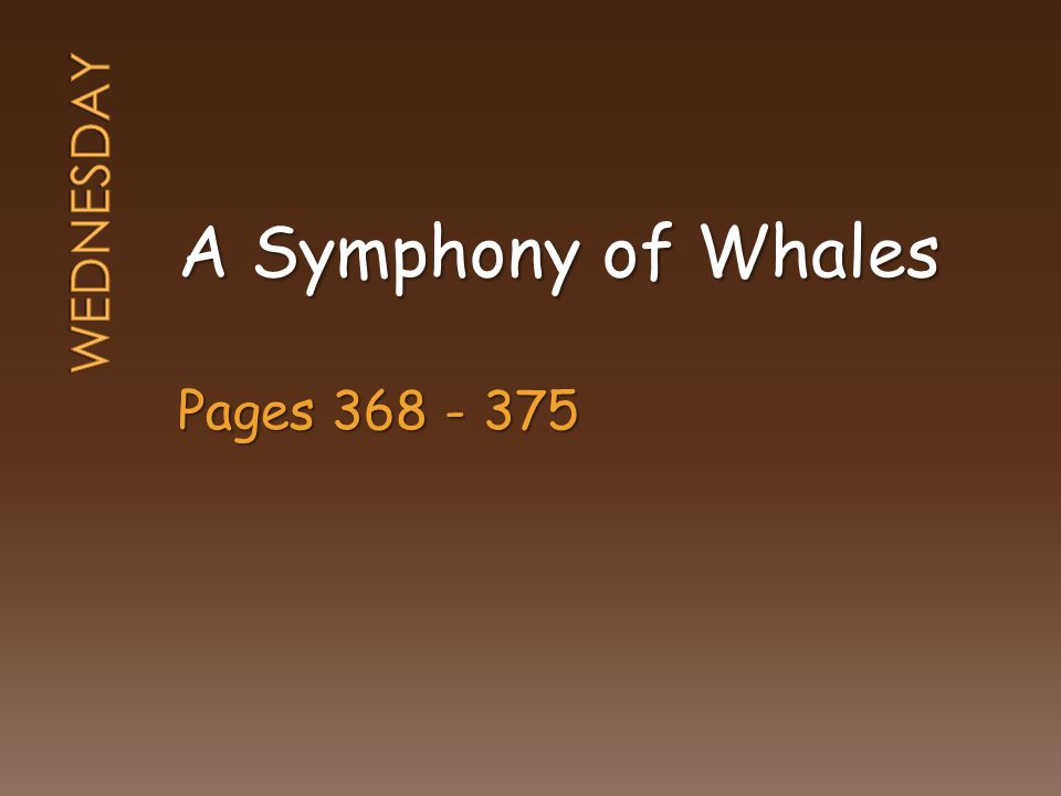A Symphony of Whales Pages 368 - 375