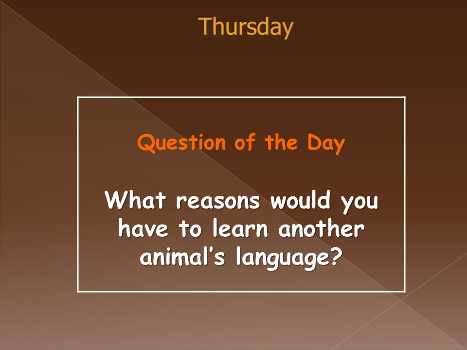 Question of the Day What reasons would you have to learn another animal's language