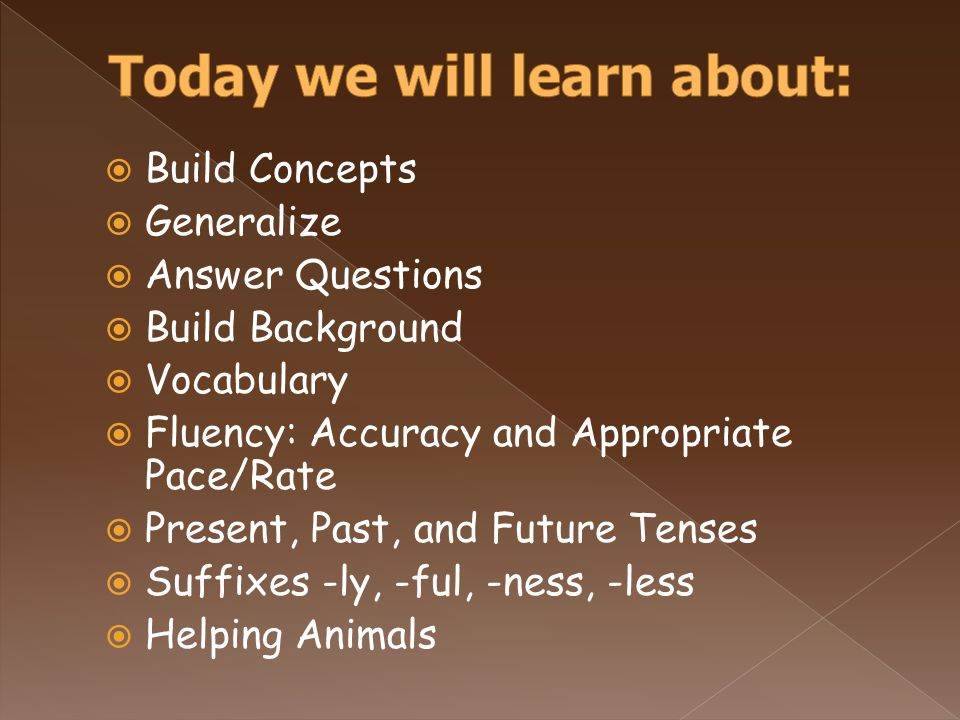  Build Concepts  Generalize  Answer Questions  Build Background  Vocabulary  Fluency: Accuracy and Appropriate Pace/Rate  Present, Past, and Future Tenses  Suffixes -ly, -ful, -ness, -less  Helping Animals