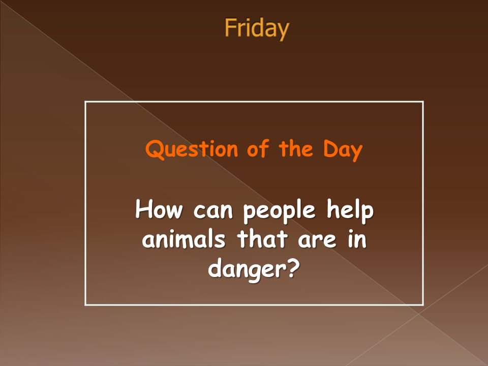Question of the Day How can people help animals that are in danger