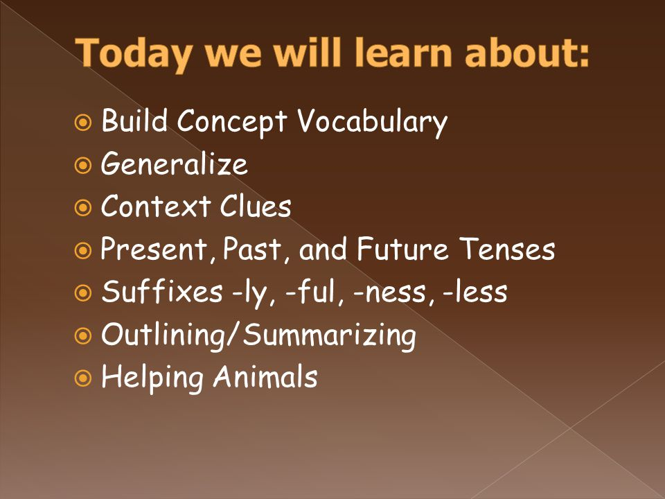  Build Concept Vocabulary  Generalize  Context Clues  Present, Past, and Future Tenses  Suffixes -ly, -ful, -ness, -less  Outlining/Summarizing