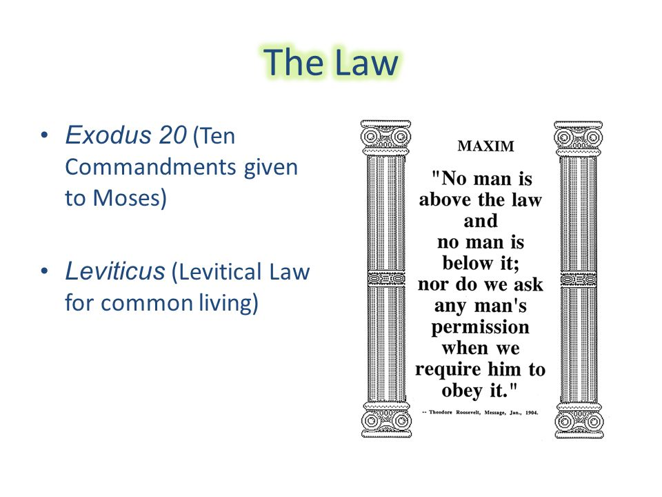 Exodus 20 (Ten Commandments given to Moses) Leviticus (Levitical Law for common living)