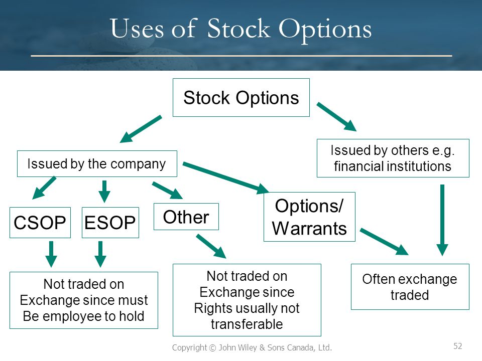 52 Copyright © John Wiley & Sons Canada, Ltd. Uses of Stock Options 52 Stock Options Issued by the company Issued by others e.g. financial institution