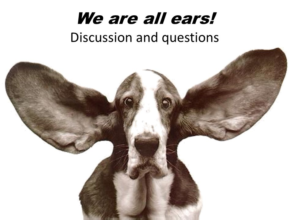 We are all ears! Discussion and questions