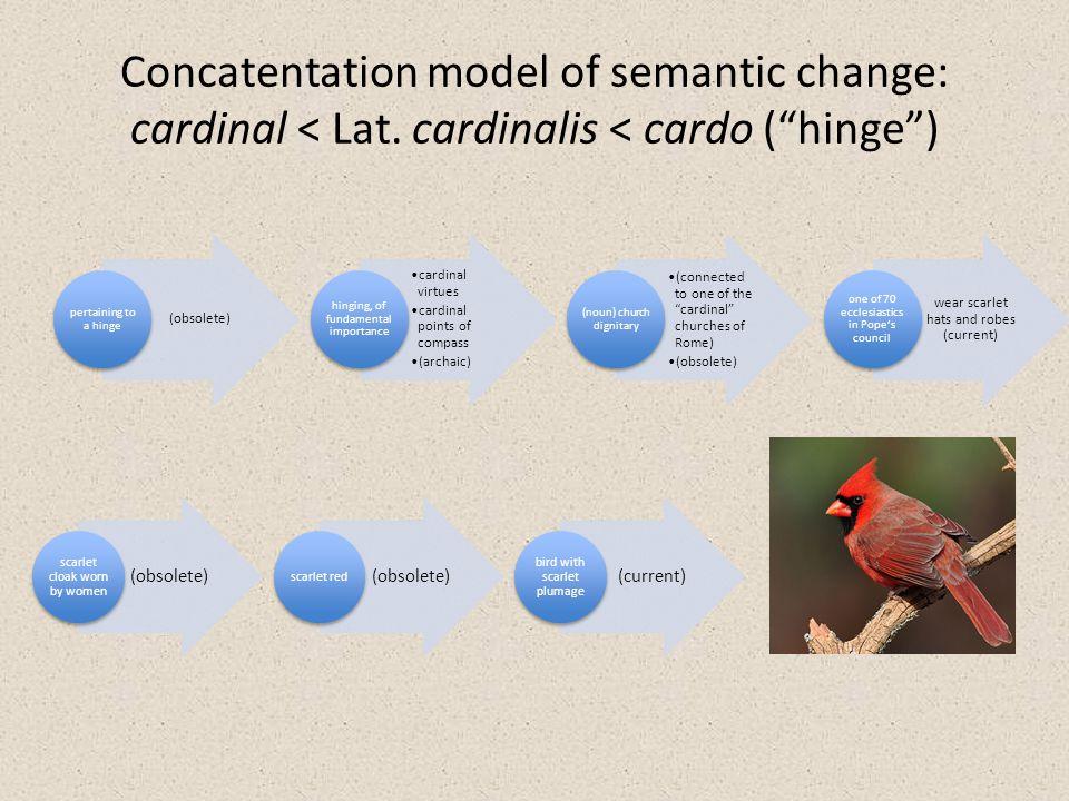 Concatentation model of semantic change: cardinal < Lat.