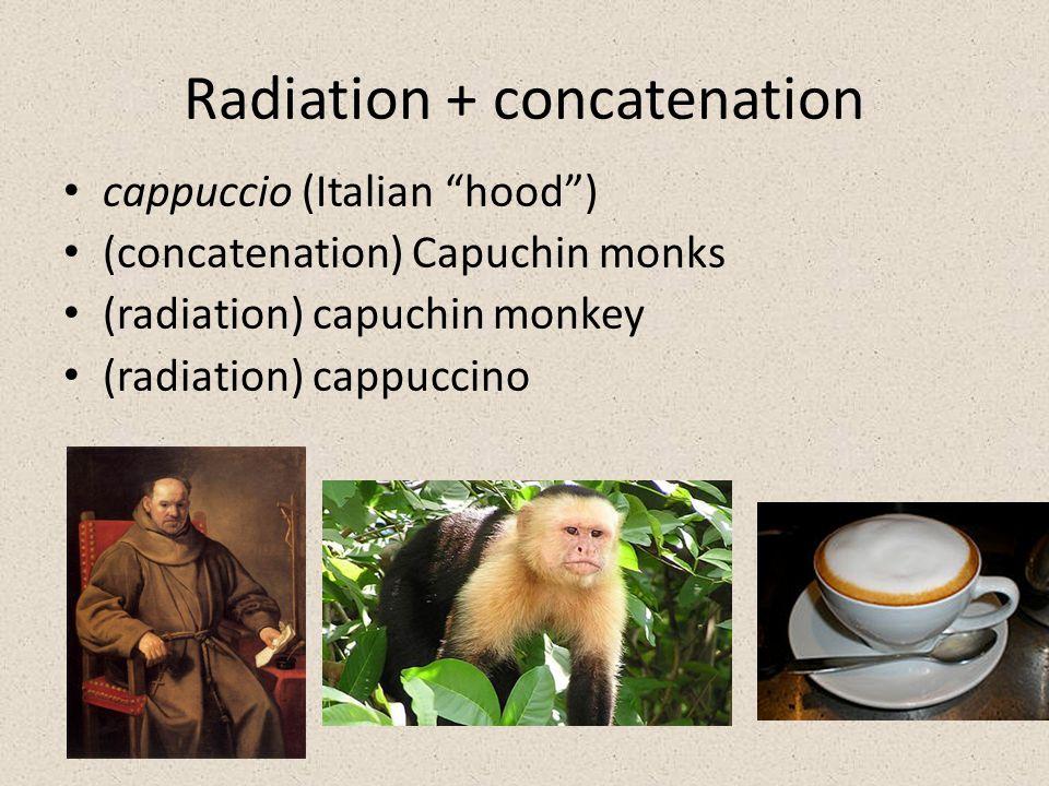 Radiation + concatenation cappuccio (Italian hood ) (concatenation) Capuchin monks (radiation) capuchin monkey (radiation) cappuccino
