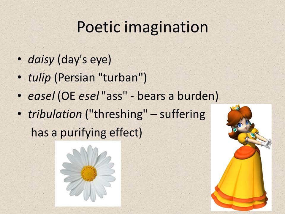 Poetic imagination daisy (day s eye) tulip (Persian turban ) easel (OE esel ass - bears a burden) tribulation ( threshing – suffering has a purifying effect)