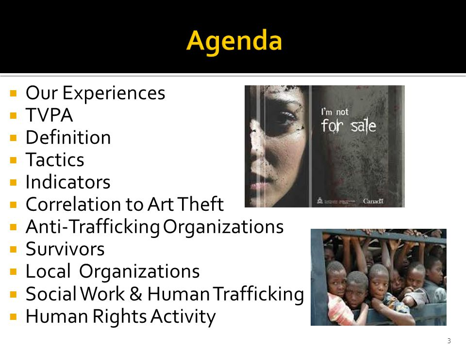  Our Experiences  TVPA  Definition  Tactics  Indicators  Correlation to Art Theft  Anti-Trafficking Organizations  Survivors  Local Organizations  Social Work & Human Trafficking  Human Rights Activity 3