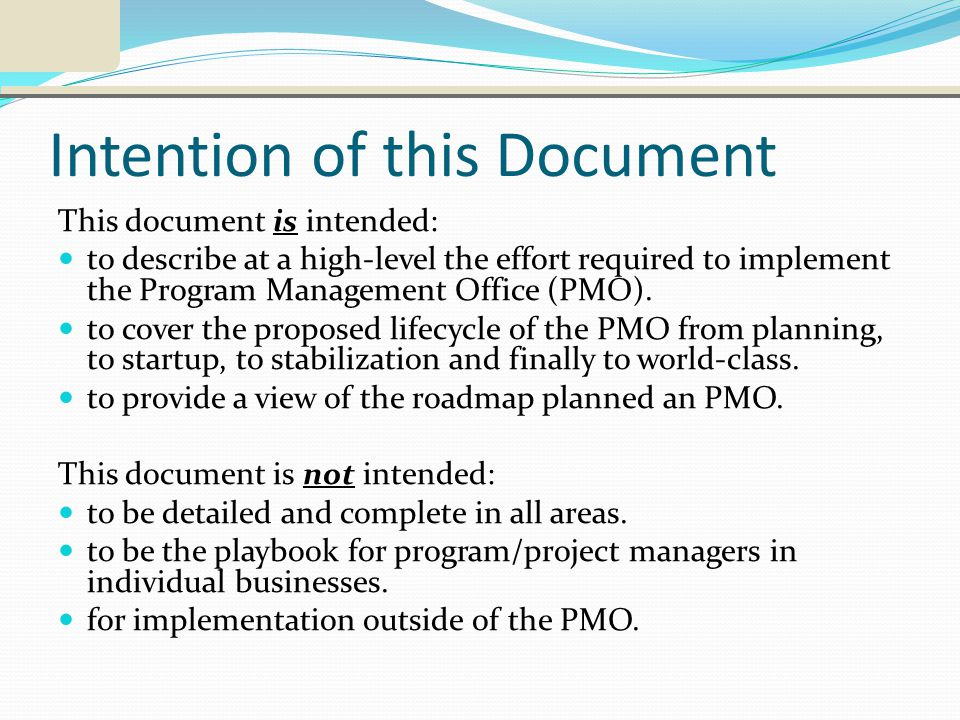 Intention of this Document This document is intended: to describe at a high-level the effort required to implement the Program Management Office (PMO).