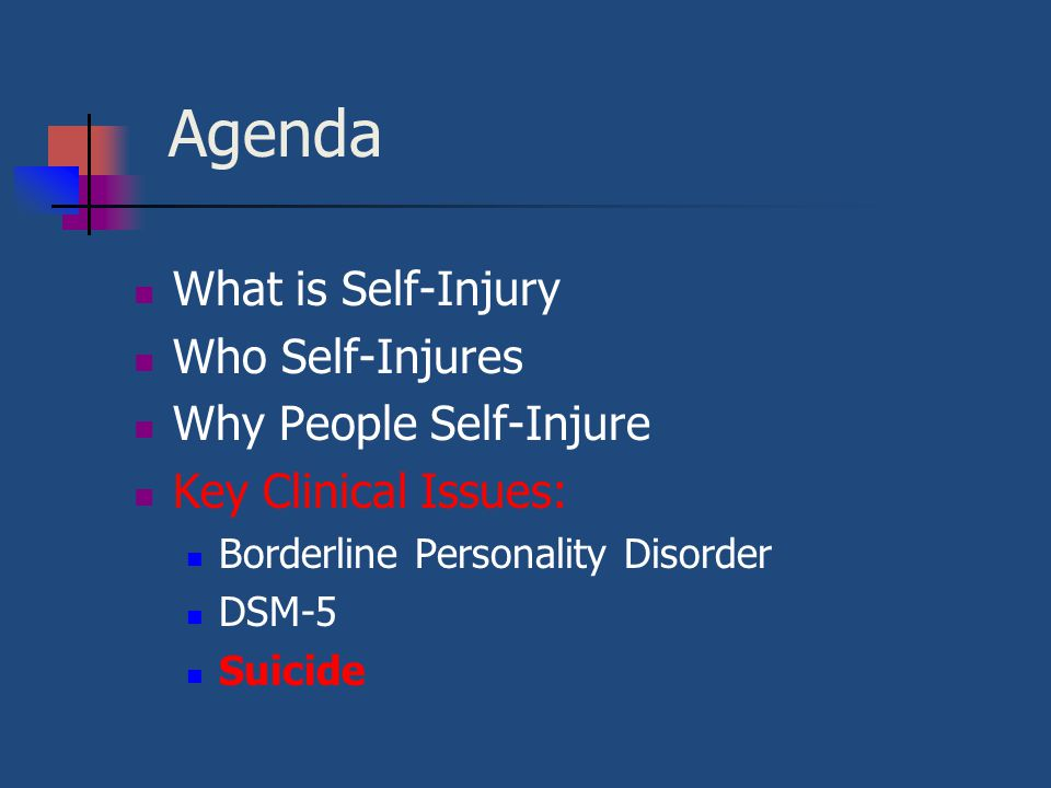 Agenda What is Self-Injury Who Self-Injures Why People Self-Injure Key Clinical Issues: Borderline Personality Disorder DSM-5 Suicide