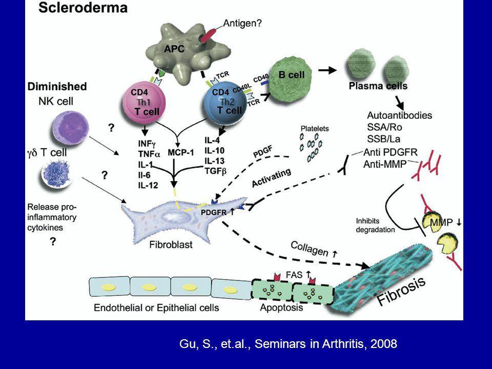 Gu, S., et.al., Seminars in Arthritis, 2008