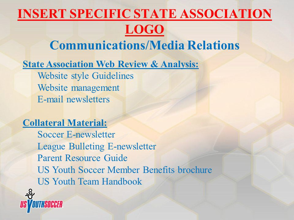 INSERT SPECIFIC STATE ASSOCIATION LOGO Communications/Media Relations State Association Web Review & Analysis: Website style Guidelines Website manage