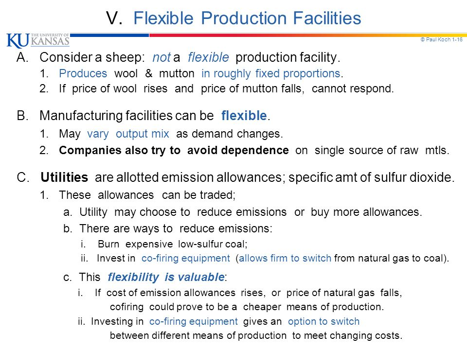 © Paul Koch 1-16 V. Flexible Production Facilities A. Consider a sheep: not a flexible production facility. 1. Produces wool & mutton in roughly fixed