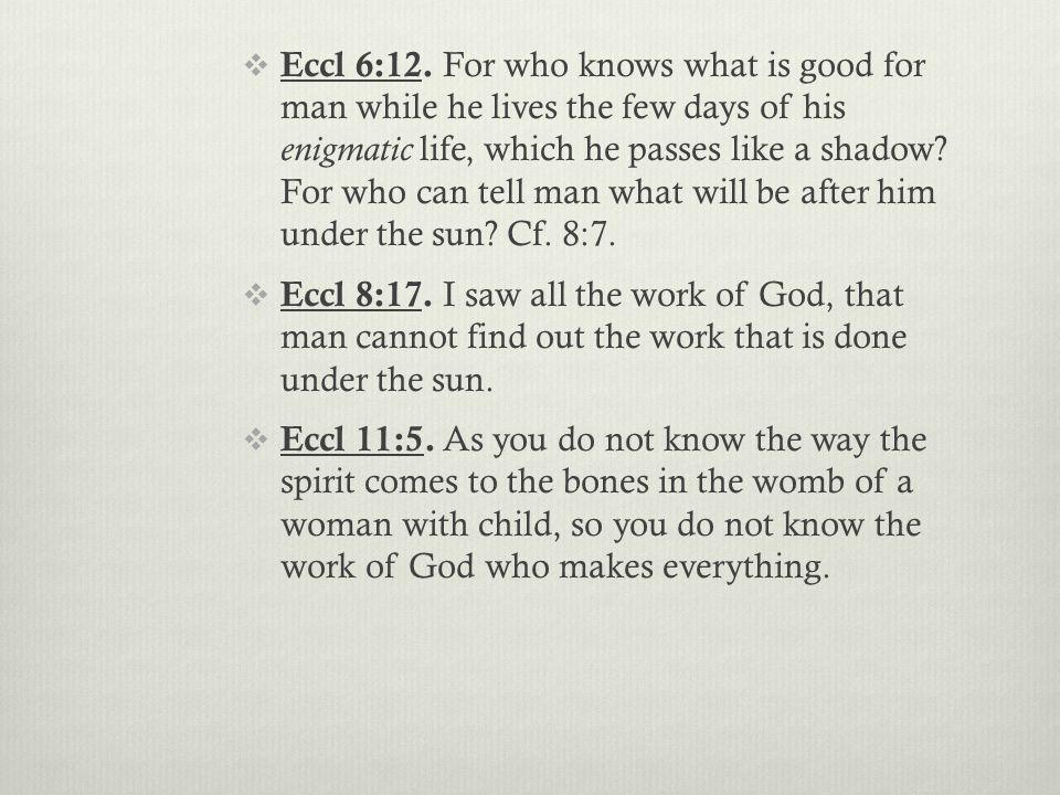  Eccl 6:12.