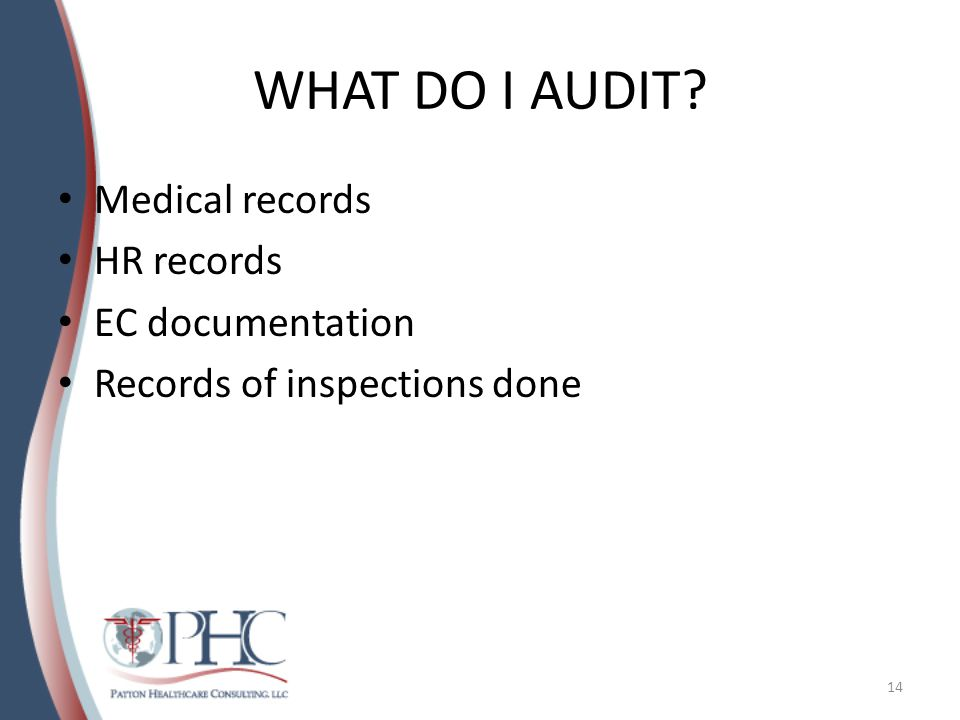 WHAT DO I AUDIT? Medical records HR records EC documentation Records of inspections done 14