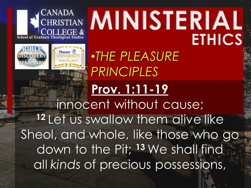 THE PLEASURE PRINCIPLES THE PLEASURE PRINCIPLES Prov.