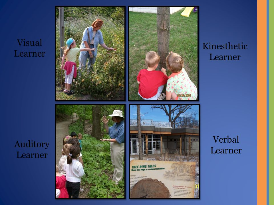 Visual Learner Kinesthetic Learner Auditory Learner Verbal Learner
