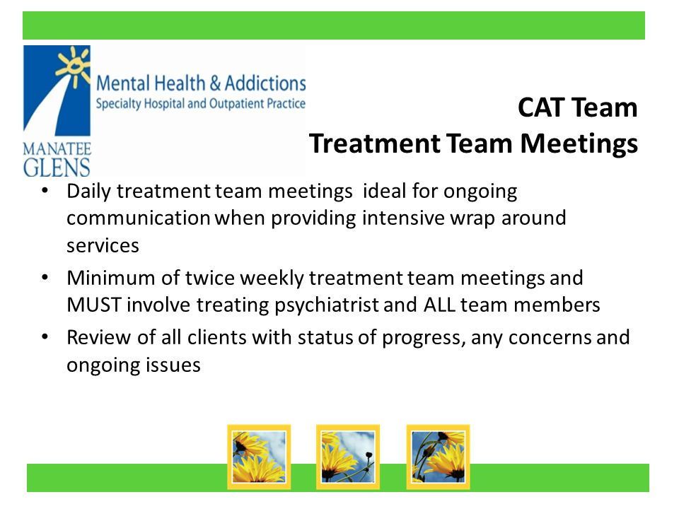 CAT Team Treatment Team Meetings Daily treatment team meetings ideal for ongoing communication when providing intensive wrap around services Minimum of twice weekly treatment team meetings and MUST involve treating psychiatrist and ALL team members Review of all clients with status of progress, any concerns and ongoing issues