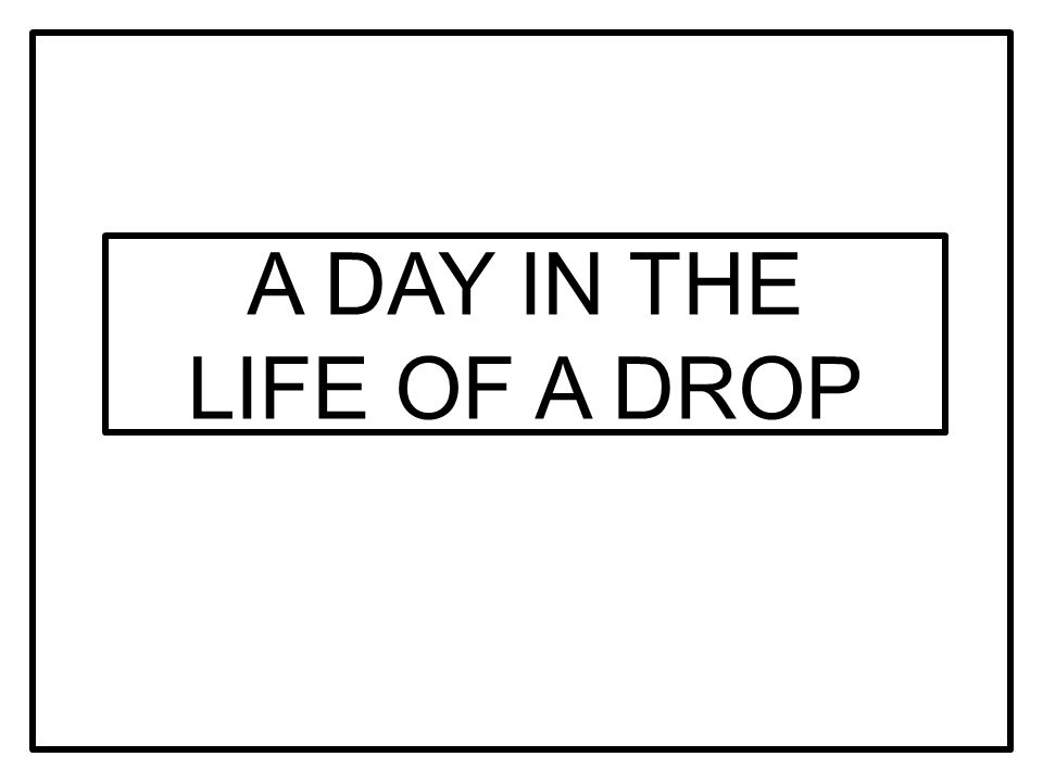 A DAY IN THE LIFE OF A DROP