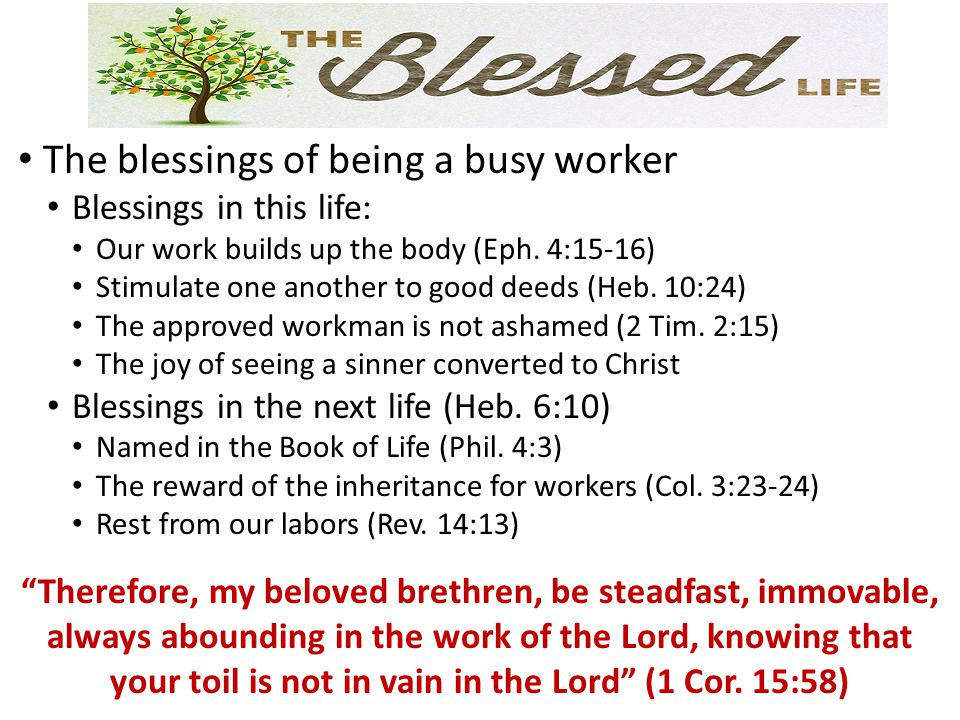 The cursed life: Deceitful workers (2 Cor.11:13) Wrong intentions (Matt.