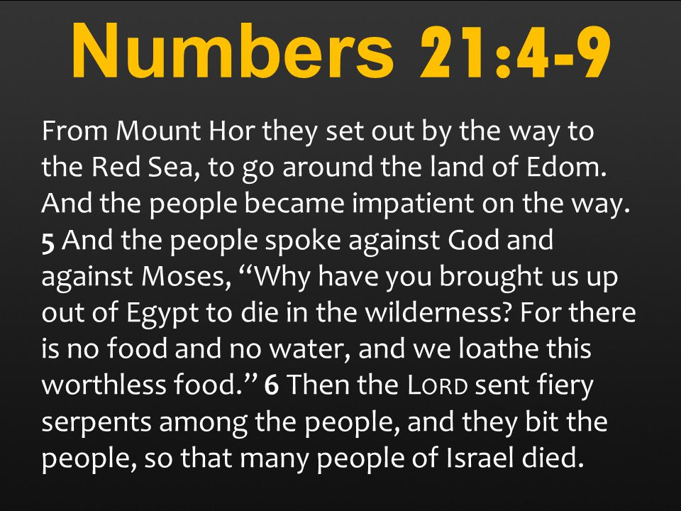Numbers 21:4-9 From Mount Hor they set out by the way to the Red Sea, to go around the land of Edom.